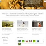 Chameleon Theme by Elegant Themes [Review]