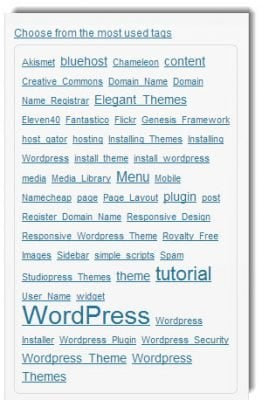 How to add Tags to a WordPress Post