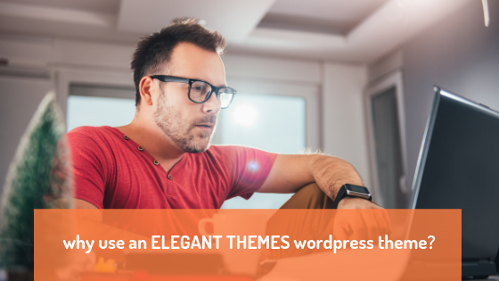 why use a theme from Elegant Themes?