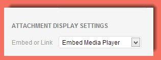 Embed Media Player