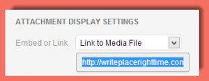 Link to Media File