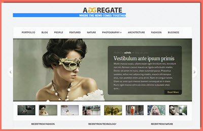 picture of Aggregate theme from Elegant themes
