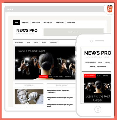picture of News Pro theme from StudioPress