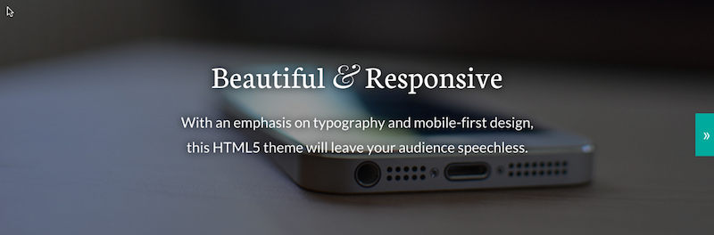 mobile responsive WordPress theme