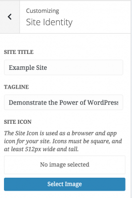 Site Identity panel in Customizer