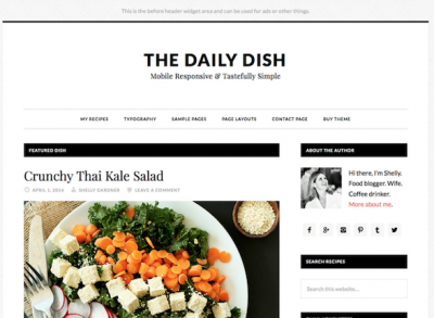 Daily Dish Pro Magazine theme