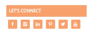 social follow widget