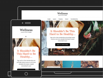 Wellness Pro theme from StudioPress