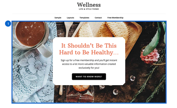 Wellness Pro front page Widget 1