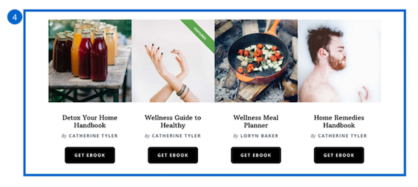 Wellness Pro front page widget area 4