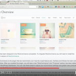 How to Choose an E-Commerce Theme for WordPress [video]