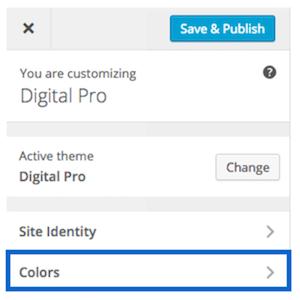 Digital Pro Color Customizer