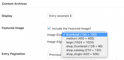 image sizes in theme settings