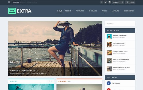 Extra - one of the best WordPress themes for freelancers