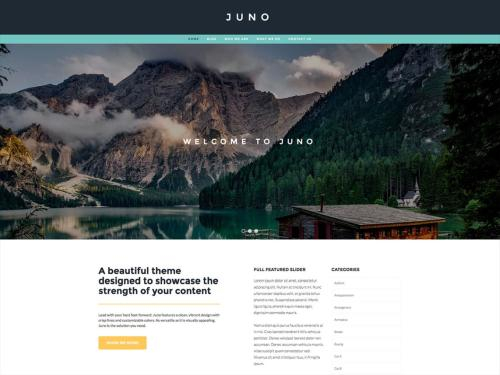 Juno - one of the best WordPress themes for freelancers