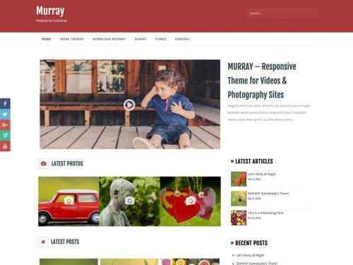 Murray - one of the best WordPress themes for freelancers